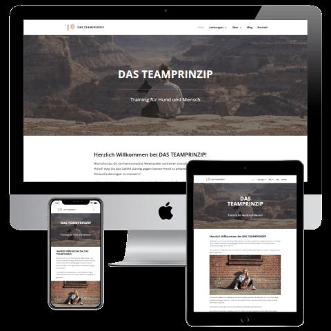 Webdesign Bottrop Neoseo Referenz Das Teamprinzip